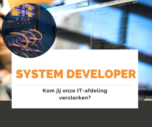 system developer